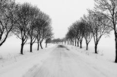zimowy Szonów_1